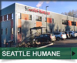 Seattle Humane, Bellevue, WA
